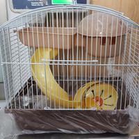 Kandang hamster lucu 2 tingkat import high quality