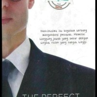Novel The Perfect Husband