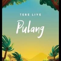 Novel Pulang ( Tere Liye )