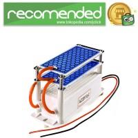 Ozonizer DIY Ozone Generator 10g/h Portable Ceramic Plate Air Purifie