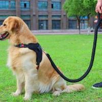 Harness Leash Dog Tali Anjing