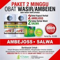 Obat Wasir Ambeien Paket 2 Minggu 100% Garansi Asli Produsen