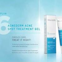 Harga Wardah Acne Treatment Gel Hargano.com