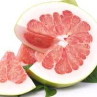 Biji benih buah jeruk pamelo super