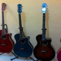 gitar string akustik eelektrik free kabel tas Limited