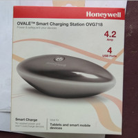 Charger Ovale Honey Well Smart Charging 4A