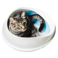 Bak Pasir Kucing OTG