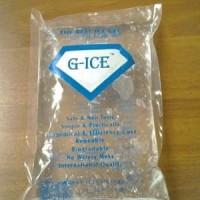 G-Ice 500 gram