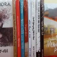 1 paket isi 10 Novel karya BOY CANDRA hobi koleksi