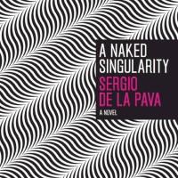 A Naked Singularity - Sergio de La Pava (America/ Thriller)