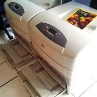 Hp Laserjet Colour 5500 A3/Printer A3+/Printer Laserjet khusus