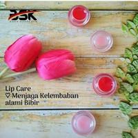 Lip Care SR12