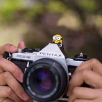 Hot Shoe Cover FLash Minions Unik Lucu Keren Kece Kamera DSLR Canon Ni