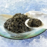 Prunier Caviar Paris Premium Caviar 250gr Telur Ikan Hitam Import