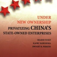 Under New Ownership,Privatizing China's State-owned Enterprises