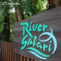Harga tiket masuk river safari singapore anak | antitipu.com