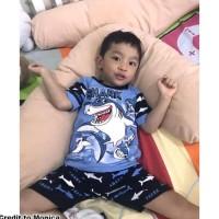 Best Seller Baju Setelan Anak Shark Stelan Pakaian Anak Bayi Keren