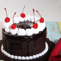 Kue Ulang Tahun Chocolate Fudge / Blackforest 16 cm bulat MURAH ENAK