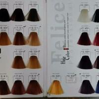 Harga cuci gudang felice professional hair color pewarna rambut felice | Pembandingharga.com