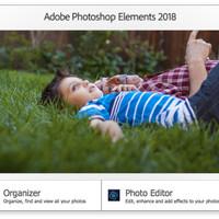 Adobe Photoshop Elements 2018 Original