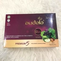 Audela travel pack