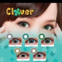 SOFTLENS NEW CLOVER / SOFT LENS CLOVER NEW