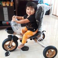 Sepeda Roda 3 fungsi 4in1. Untuk anak usia 10bln sd. 5thn.