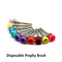 Prophy Brush pak isi 10 pcs