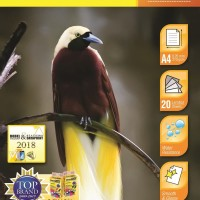 DataPrint GLOSSY PHOTO PAPER 210 GR A4