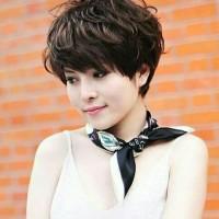 Jual Rambut Palsu Wanita Model Rambut Pendek Ikal Kab Tangerang Efendy Online Shop Tokopedia