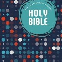 NIV Holy Bible for Kids OutReach (paperback) New International Version
