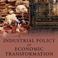 Industrial Policy and Economic Transformation in Africa - Stiglitz