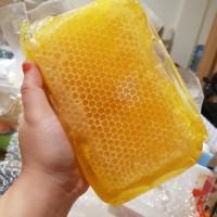 Harga madu sarang apis melifera asli 500 | Pembandingharga.com