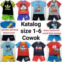 katalog setelan kaos karakter dan oshkosh anak laki-laki size 1-6