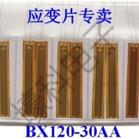 Strain Gauges 120 ohm 30AA (BX120-30AA)