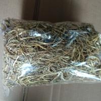 makanan kelinci rumput Timothy