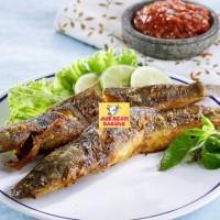 Harga ikan lele frozen bumbu siap goreng bakar 500gram harga | antitipu.com