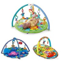 sewa fisherprice playgym