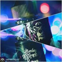Liquid SENSO BLUEBERRY CREAM Sunday Morning 60ML Premium Vape Ejuice #