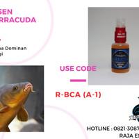 Essen Ikan Mas Babon Aroma Wangi | Segala Cuaca/Umpan/Air Kolam
