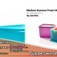 Jual Tupperware Medium Summer Fresh Set Makan Bekal Makan Lunch Box Murah