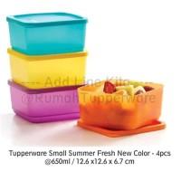 Jual Tupperware Small Summer Fresh 2pcs - Kotak Makan Serbaguna Murah