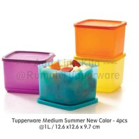 Jual Tupperware Medium Summer 2pcs Fresh - Kotak makan serbaguna Murah