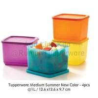 Jual Tupperware Medium Summer Fresh (4) Kotak Makan Segi Empat Murah