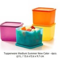 Jual Medium summer fresh (4) Toples Tupperware Murah