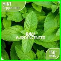 [150] Benih Biji Herbal Mint - Peppermint Import