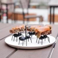 ANT Semut Garpu Tusuk Tusukan Buah Makanan Bento Fruit Fork Food Pick