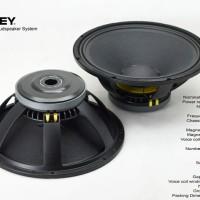 speaker ashley 18inch 18in 18 inch L900 l 900