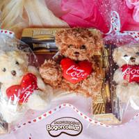 Parsel Teddy Love Valentine