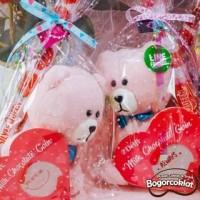 Parsel Boneka Coklat Valentine Teddy Pink